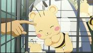 Bearbee3
