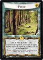 Forest-card6.jpg