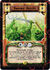 Swamp Spirits-card
