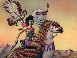 Hawk Riders