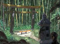 Kinuye's Garden