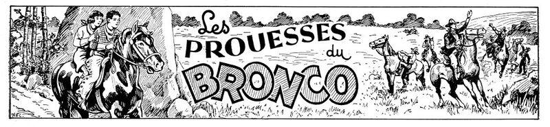 Bronco 11 - Copie