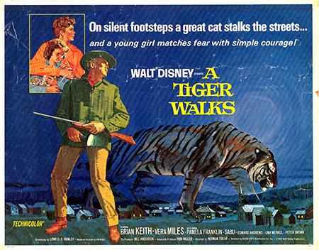 Tiger walks poster