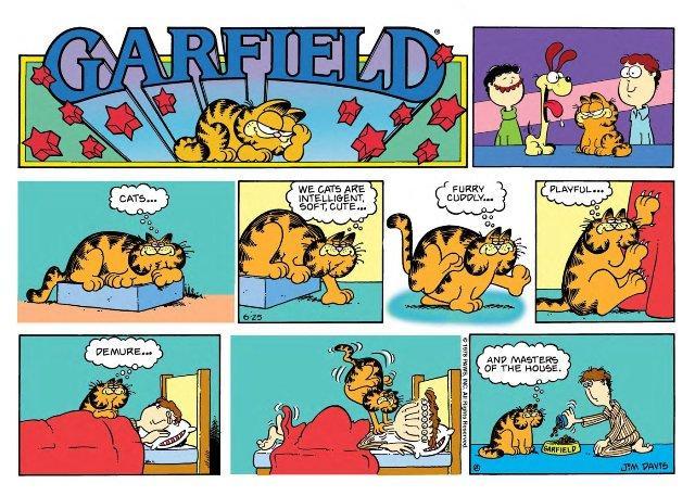 Garfield us 25-6-1978