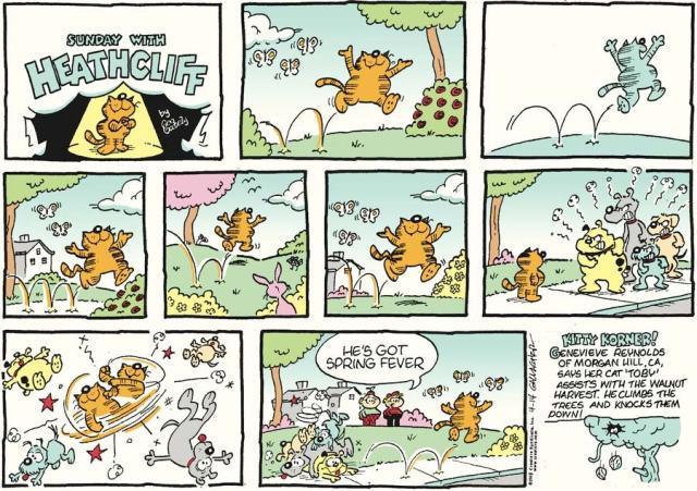 Heathcliff sunday