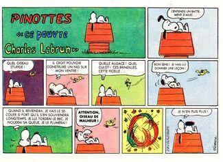Pinotte 6-5-67