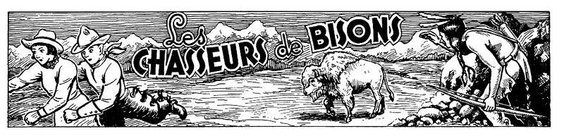 Bisons 11 - Copie
