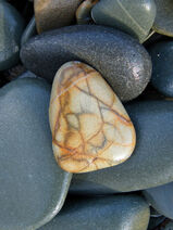 Rocks on Carrick Beach 3 by BlonderMoment