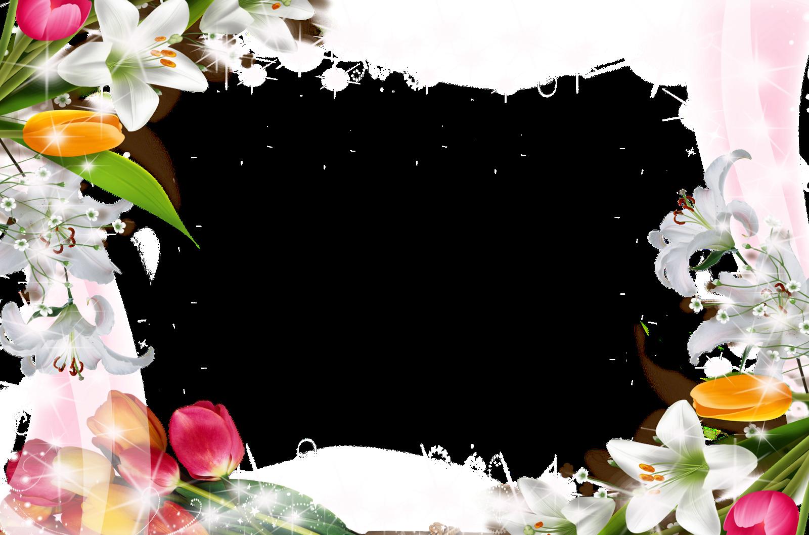 Imagen - Eileen y la flor de la Sakura imagen código.png | Wiki La ...