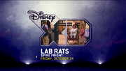 SPIKE FRIGHT LAB RATS.pn