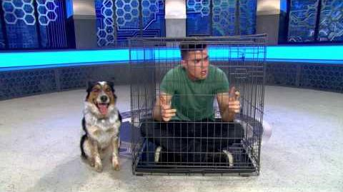 "Lab Rats Bionic Island - ""Bionic Dog"" Preview"