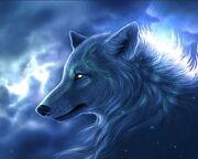 Arctic-Wolf-wallpaper