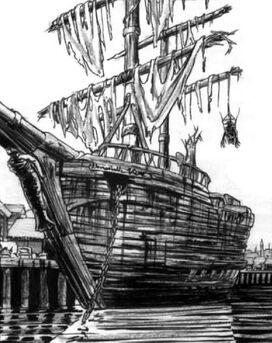 Mousillon Puerto por Tony Parker