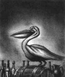 Piquito alcantara del pelicano