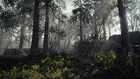 Bosque Vermintide 2