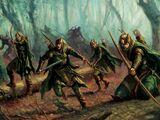 Guardia del Bosque