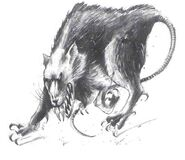 Rata gigante por John Blanche