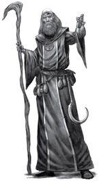 Hechicero tradicional Maestro