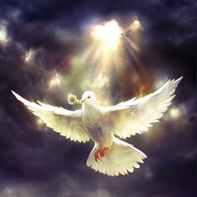 Faith of Shallya - Dying Breath