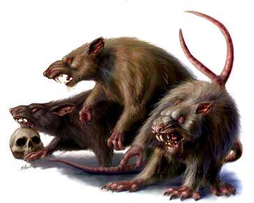 Ratas Gigantes por Britt Martin