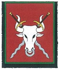 Estandarte wolfenburg