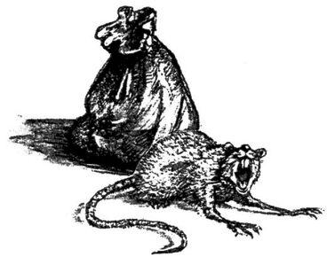 Bolsa Rata Heroquest