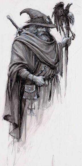 Hechicero de batalla Imperio Gris por Karl Kopinski
