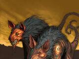Ratas Lobo