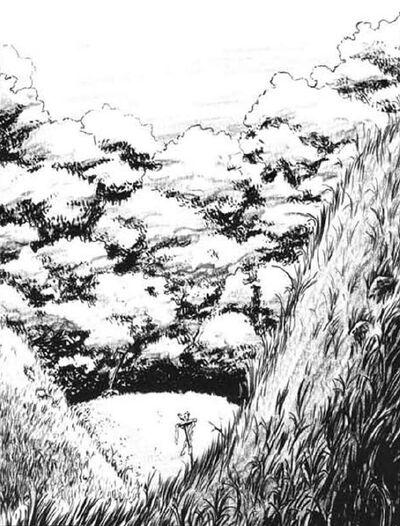 Bosque Taalgrunhaar por Tony Parker