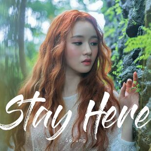 Stay Here