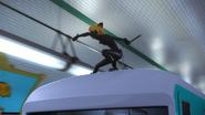 Queen Wasp (258)
