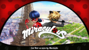 Cat Noir as seen by Marinette- Title Card