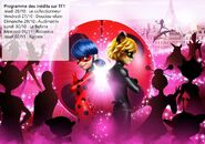 Miraculous - Season 2 - Episode Guide