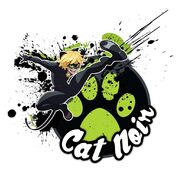 Cat Noir Miraculous holder artwork