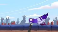 Curiosity Kicked the Cat (13)