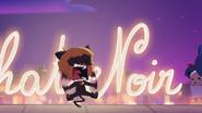 Cutest Cat Fight (38)