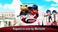 MIRACULOUS SECRETS 🐞 KAGAMI AS SEEN BY MARINETTE 🐞 Tales of Ladybug and Cat Noir