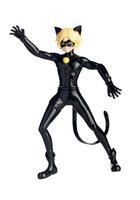 Cataclysm Cat Noir