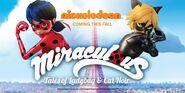 Ladybug & cat Noir 2015 Nick promo poster