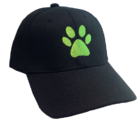 Cat Noir Embroidered Cap