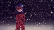 Ladybug Christmas Special (235)