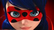 Ladybug face poster
