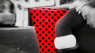 Christmaster 221
