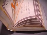 Miraculous spellbook/Gallery