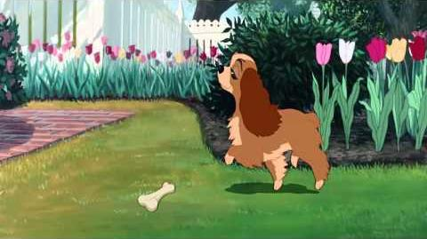 Lady and the Tramp - Lady's Morning HD