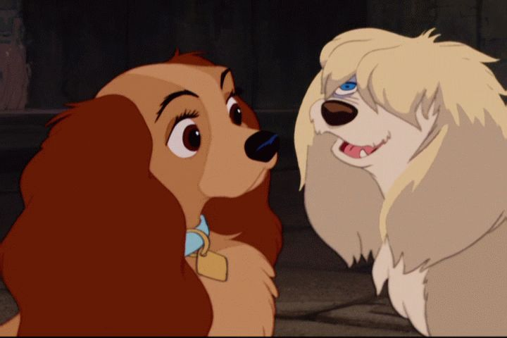 Peg Lady And The Tramp Wiki Fandom