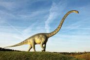 Sauropod pic
