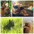 8-26-15 Miss Asia Kinney's Instagram 001