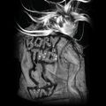 Born This Way Revenge theme 2 background 4
