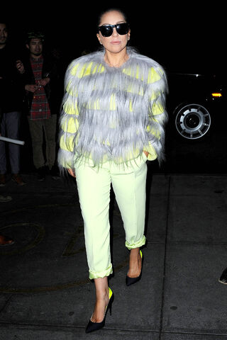 File:12-1-14 Arriving at her apartment in NYC 001.JPG